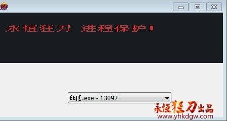 永恒狂刀进程保护1.02--适合XP,win7(32)位